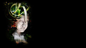 Éclatez avec le MOS et les arbres sur le fond noir photos libres de droits