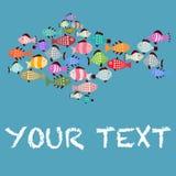 École colorée des poissons ensemble Photo stock
