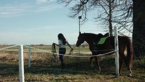 École d'équitation E banque de vidéos