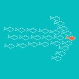 École de la natation de poissons dans la forme de la flèche Photographie stock