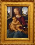 École de Lorenzo di Credi : Madonna avec l'enfant Image stock