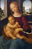École de Lorenzo di Credi : Madonna avec l'enfant Photographie stock