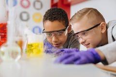 Écoliers gais se penchant étroitement et réaction chimique de observation Photographie stock