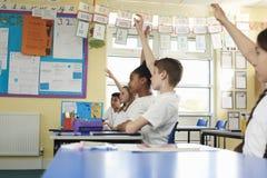 Écoliers primaires soulevant des mains dans la classe, angle faible Image libre de droits