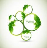 Écologie abstraite de bulles de cercle de lame de nature   Image stock