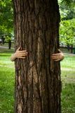 Écologie, concept affectueux de nature photo stock