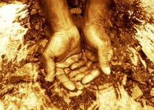 Écologie de l'eau Image libre de droits