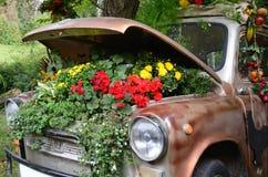 Écologie, fleurs sous le capot d'une vieille voiture Images libres de droits