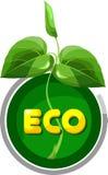 Écologie verte Photos libres de droits