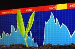 Économie croissante Image stock