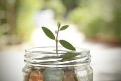 Économie et finances photos libres de droits