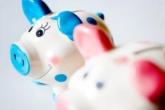 Économie et finances - l'épargne dans une tirelire - deux roses et bleus Photos libres de droits