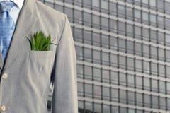Économie verte Photographie stock libre de droits