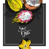 Économies tropicales tirées par la main d'abrégé sur vecteur le calibre de carte de date avec la collection de pitaya exotique de illustration stock