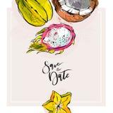 Économies tropicales tirées par la main d'abrégé sur vecteur le calibre de carte de date avec la collection de pitaya exotique de illustration libre de droits