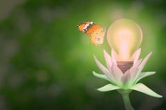 Économisez l'énergie avec le concept d'ampoule photos libres de droits