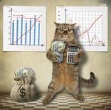 Économiste 2 de chat illustration stock