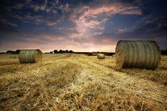 écope le coucher du soleil d'or de foin Photographie stock libre de droits