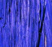 Écorce bleue en bois Image stock