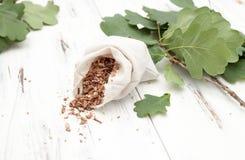 Écorce coupée de chêne avec les branches de chêne Images stock