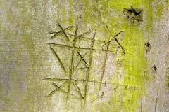 ?corce d'arbre entaill?e de h?tre avec les riens et les croix de jeu photo stock