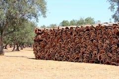 Écorce empilée du chêne de liège dans l'Alentejo, Portugal Photographie stock