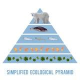 Écoulement d'énergie d'écosystème illustration de vecteur