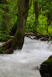 Écoulement d'eau Photographie stock