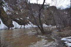 Écoulement d'eau au pied des montagnes Image stock