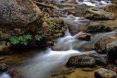 Écoulement d'eau dans la petite cascade Beauté dans la nature Photo libre de droits