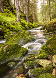 Écoulement d'eau dans un courant, longue exposition, verticale Photographie stock