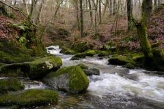 Écoulement de l'eau dans Ambleside, Angleterre. Photos stock
