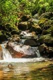 Écoulement de rivière Photos stock