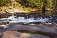 Écoulement régulier de la rivière dans la forêt Photos libres de droits