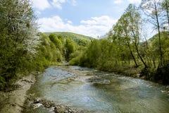 Écoulement rapide de rivière de montagne Photographie stock