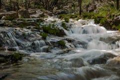 Écoulements d'eau au printemps images stock