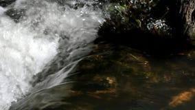 Écoulements de courant clairs de l'eau le long de côte proche banque de vidéos