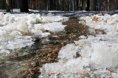 Écoulements de crique de ressort dans la forêt parmi la neige de fonte images stock