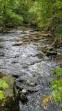 Écoulements de détente de rivière photographie stock libre de droits