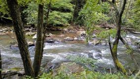 Écoulements de détente de rivière photos libres de droits