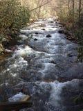 Écoulements de rivière de l'eau blanche Photo stock