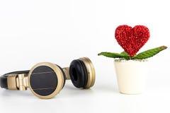 Écouteur pour le concept de écoute de musique Romance d'amour Photo stock