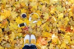 Écouteurs blancs avec un joueur et une tasse de thé et de café sur un fond des feuilles jaunes Photographie stock libre de droits