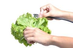 Écouteurs et légumes Image libre de droits