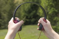 écouteurs Rouge-noirs dans les mains dans la perspective des arbres coniféres photos libres de droits