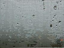 Écran de fil de moustique l'hiver pleuvant le fond photos libres de droits