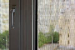 Écran de moustique sur une fenêtre image libre de droits