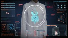 Écran numérique émouvant de docteur féminin, corps de bourdonnement balayant les organes internes, système de digestion dans l'af illustration libre de droits