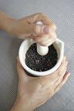 Écrasement du poivre avec le mortier et le pilon Image stock