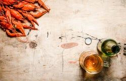 Écrevisses bouillies fraîches avec de la bière Images stock